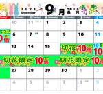9月のポイントセールカレンダー