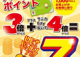10月15日(火)限定、ポイント7倍!!