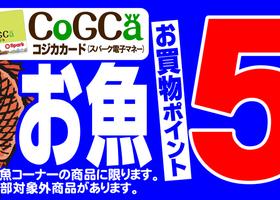 10/24(木)お魚 スパークコジカカードお買物ポイント5倍