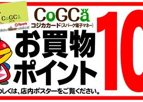 9/19(月)スパークコジカカードお買物ポイント10倍!
