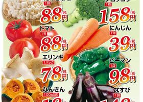 お野菜厳選10品!