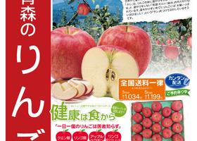 【産直ギフト】青森県産サンふじりんご