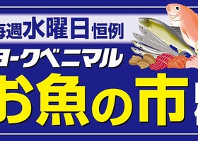 水曜日恒例【お魚の市】