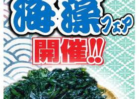 海藻フェアー初開催いたします!!
