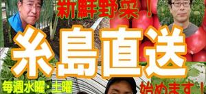 糸島からの直送新鮮野菜を15時頃から販売します!