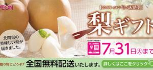 2018年イオン旬の味覚便 梨ギフト
