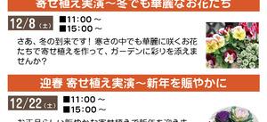 12月イベントスケジュールです。