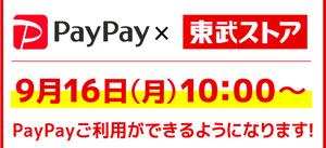 9/16(月) あさ10時 当店でPayPayスタート!