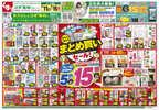 スギドラッグ 和泉和田店のチラシ・特売情報