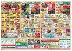 ワイズマートディスカ 浦安弁天店のチラシ・特売情報