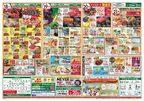 ワイズマートディスカ 西船本郷店のチラシ・特売情報