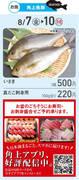 角上魚類 シャポー船橋店のチラシ・特売情報