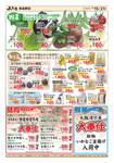 産直市場よってって 泉佐野店のチラシ・特売情報