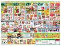 タイヨー 土浦店のチラシ・特売情報