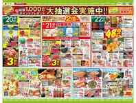 タイヨー 成田店のチラシ・特売情報