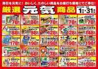 新鮮市場 花高松店のチラシ・特売情報
