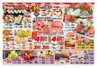大阪屋ショップ 松任店のチラシ・特売情報