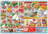 ビッグ・エー 足立西新井店のチラシ・特売情報