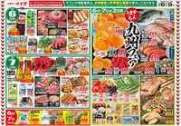 コモディイイダ 川口リプレ店のチラシ・特売情報