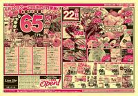 リオン・ドール 高田店のチラシ・特売情報