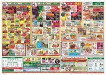 ワイズディスカ 東砂店のチラシ・特売情報