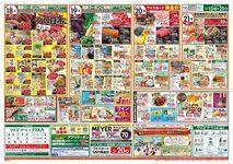 ワイズマートディスカ 高洲店のチラシ・特売情報