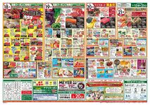 ワイズ*ディスカ 飯山満店のチラシ・特売情報