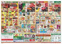 ワイズマート ペリエ西千葉店のチラシ・特売情報