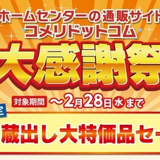 ネット限定 大感謝祭!28日(水)まで